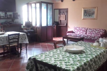 Piacevole soggiorno nel pieno centro del paese - Satriano di Lucania - Casa