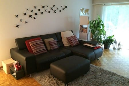 Privat Room in Klein Basel - 巴塞尔 - 公寓