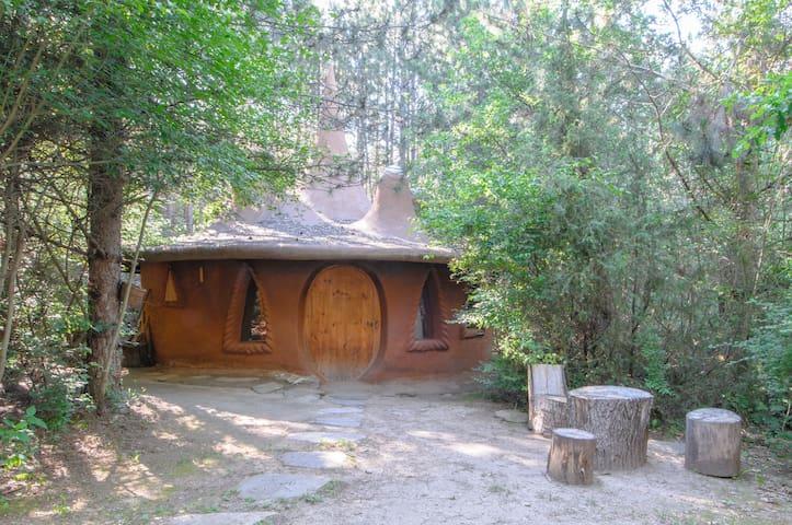 Omaya Wonder House