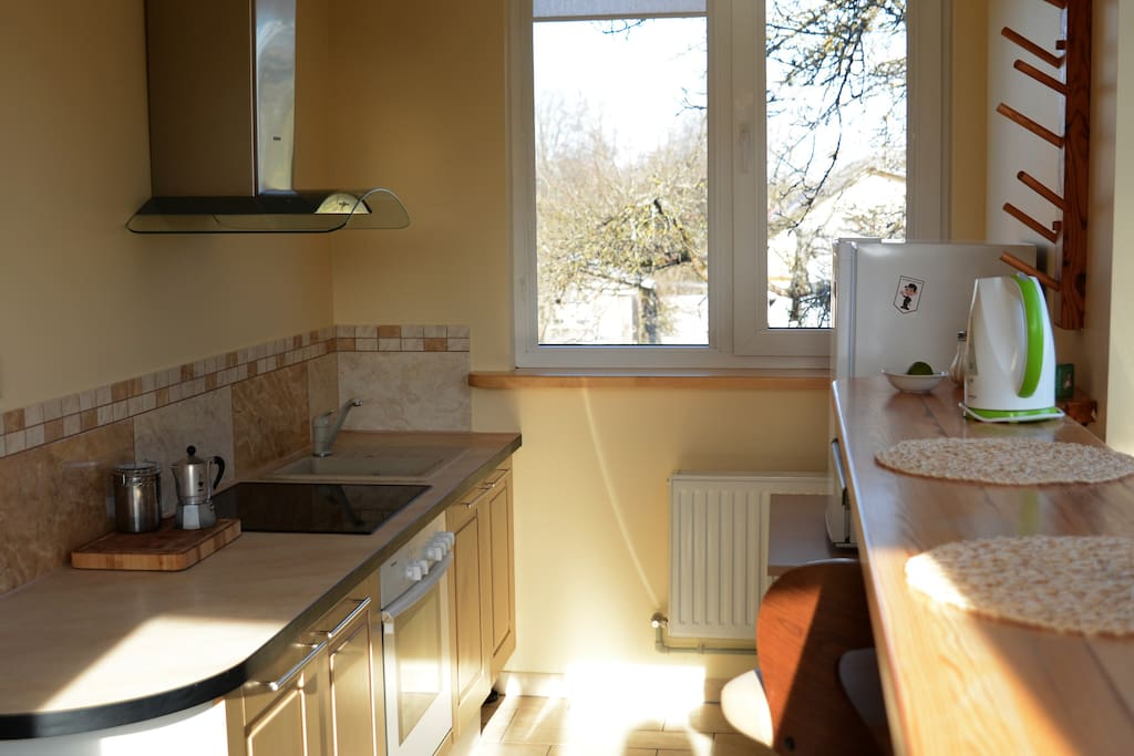 Kitchen: electric stove for cooking, microwave, fridge, lates, dishes etc.