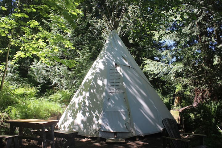 Summer 20' Tipi on Duck Creek Farm