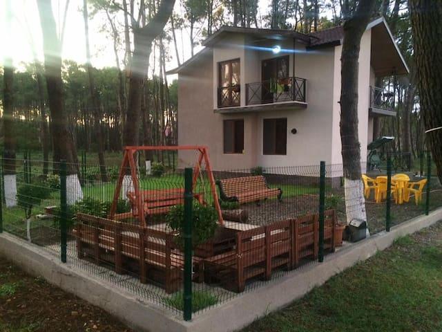 Вилла на берегу моря в Грузии - Shekvetili - Vila