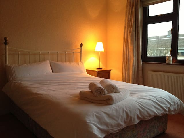 Cosy and Close to Heart of Galway - Galway - Dom