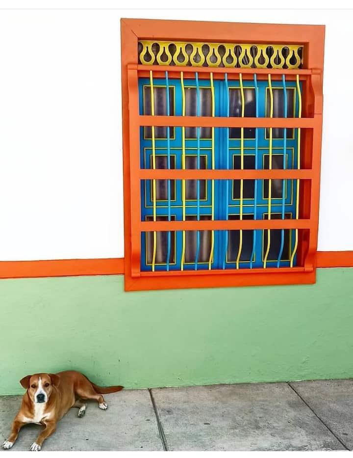 Casa la Margarita