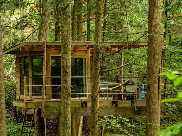 Flying-Squirrel-Tree-House