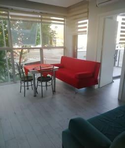 1+1 apart balkonlu daireler