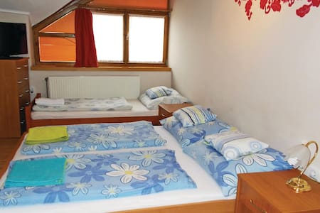 Holiday apartment with 1 room on 25m² in Makó