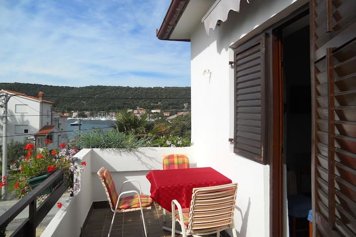 One bedroom apartment with terrace and sea view Supetarska Draga - Donja, Rab (A-5030-c)