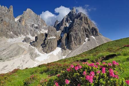 Appartamento Predazzo in Val di Fiemme - Predazzo - Huoneisto