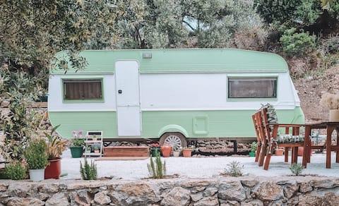 Vintage Caravan with outdoor cinema in nature!