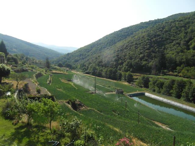 Le Mas Montet de Taleyrac - Valleraugue - Huoneisto