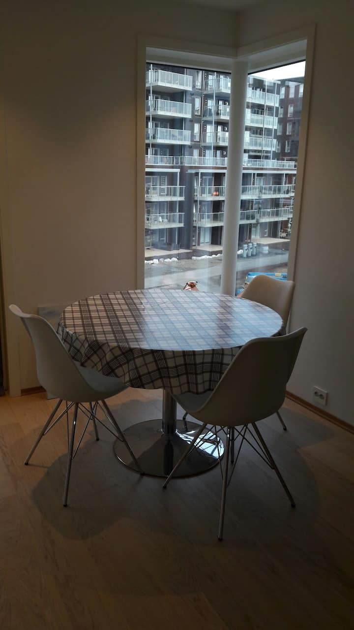 Brand New luxory apartment