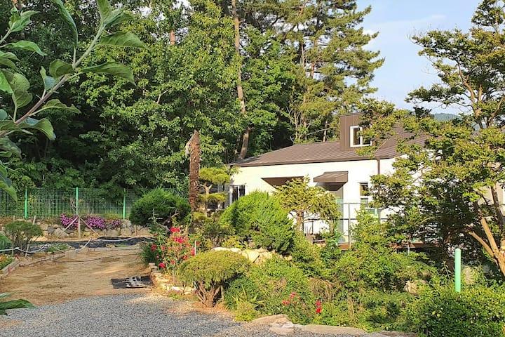 Hillside Garden House -최근지어진 캐나다식 목조주택. 넓고 아름다운 정원