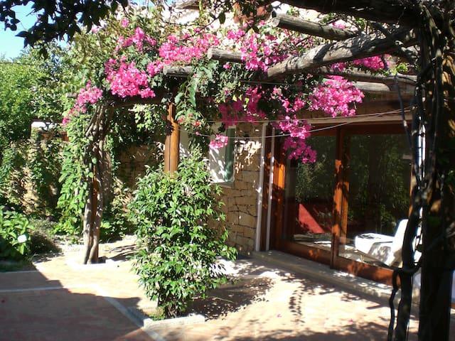 Baja Sardinia centro cieloterra LC-49 - Baja Sardinia - Apartamento