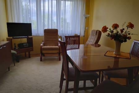 Przytulne i odnowione mieszkanie w CENTRUM Konina