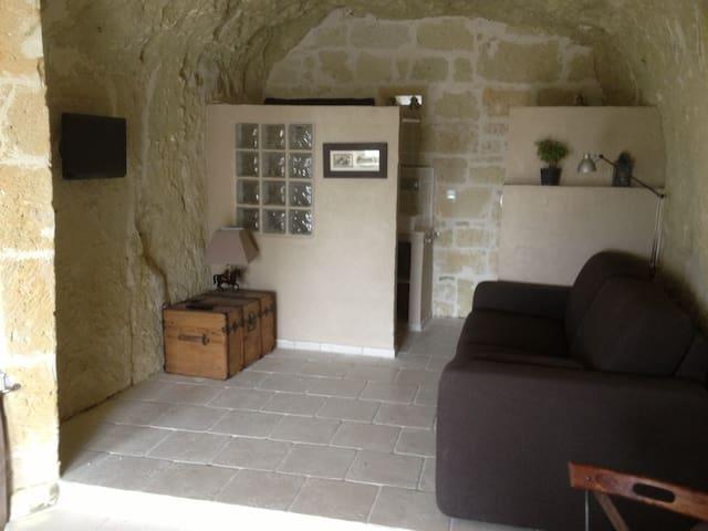 Charmant studio troglodyte entièrement refait - Saumur