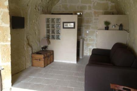 Charmant studio troglodyte entièrement refait - 索米尔 (Saumur) - 洞穴