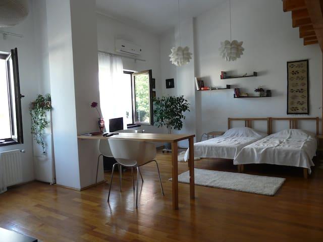 Cosy, large (55sqm) studio, Cotroceni area