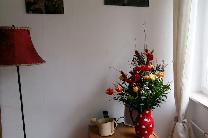 Ruhe und Sonne in Heidelberg - Heidelberg - Apartment