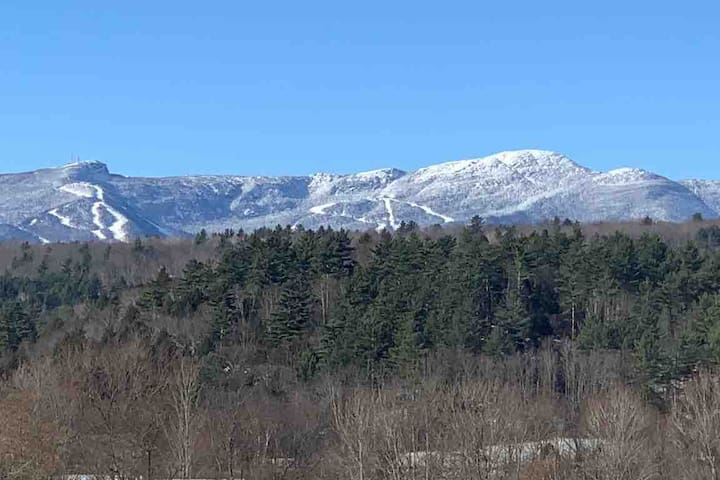 1 Bedroom Suite w Queen Bed & Mt. Mansfield Views