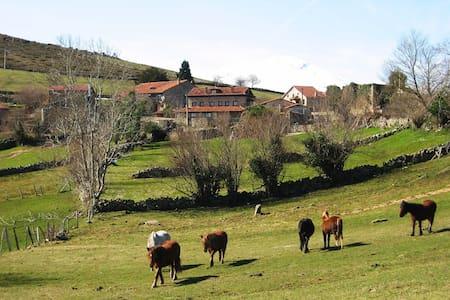 Apartamento Rural en Parque Natural Saja-Besaya