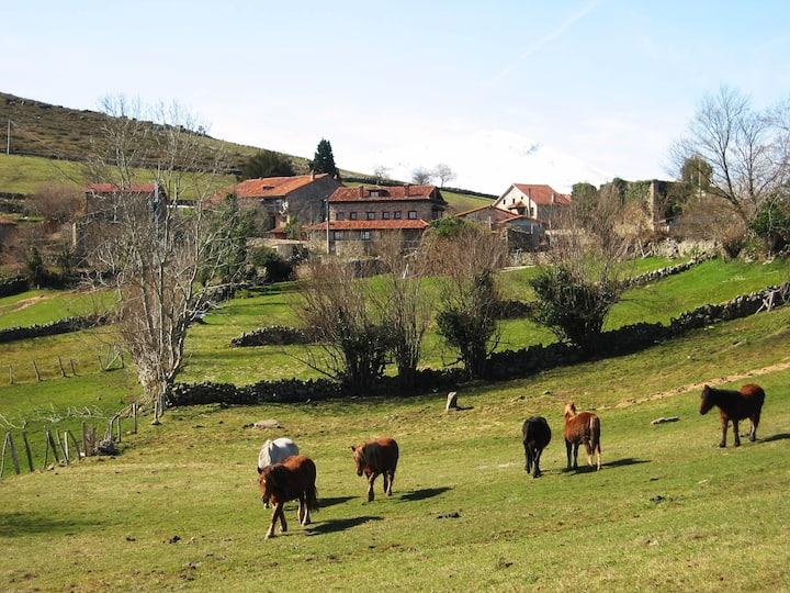 Apartamento Rural en Cantabria