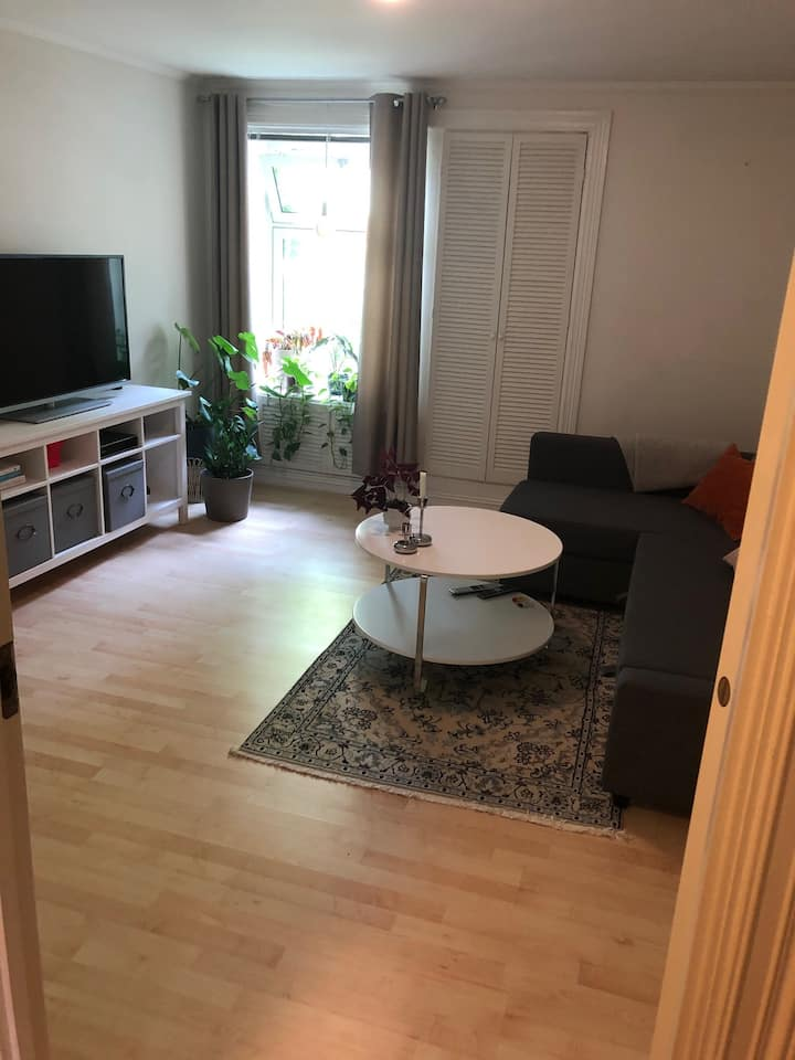 Central Oslo: Spacious room for ladies or couples