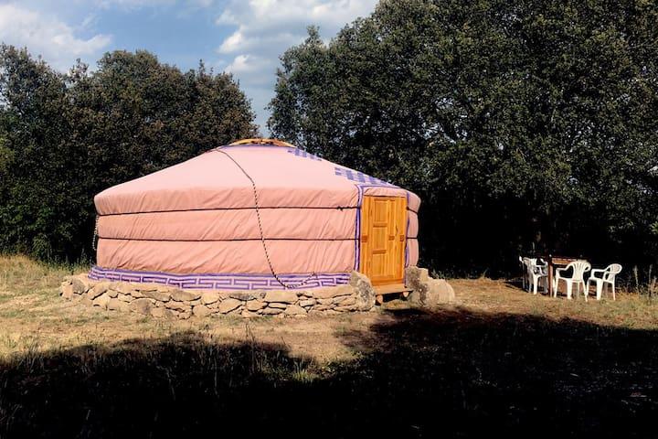 Yurta en una granja ecológica - Sant Martí d'Albars - Yurt
