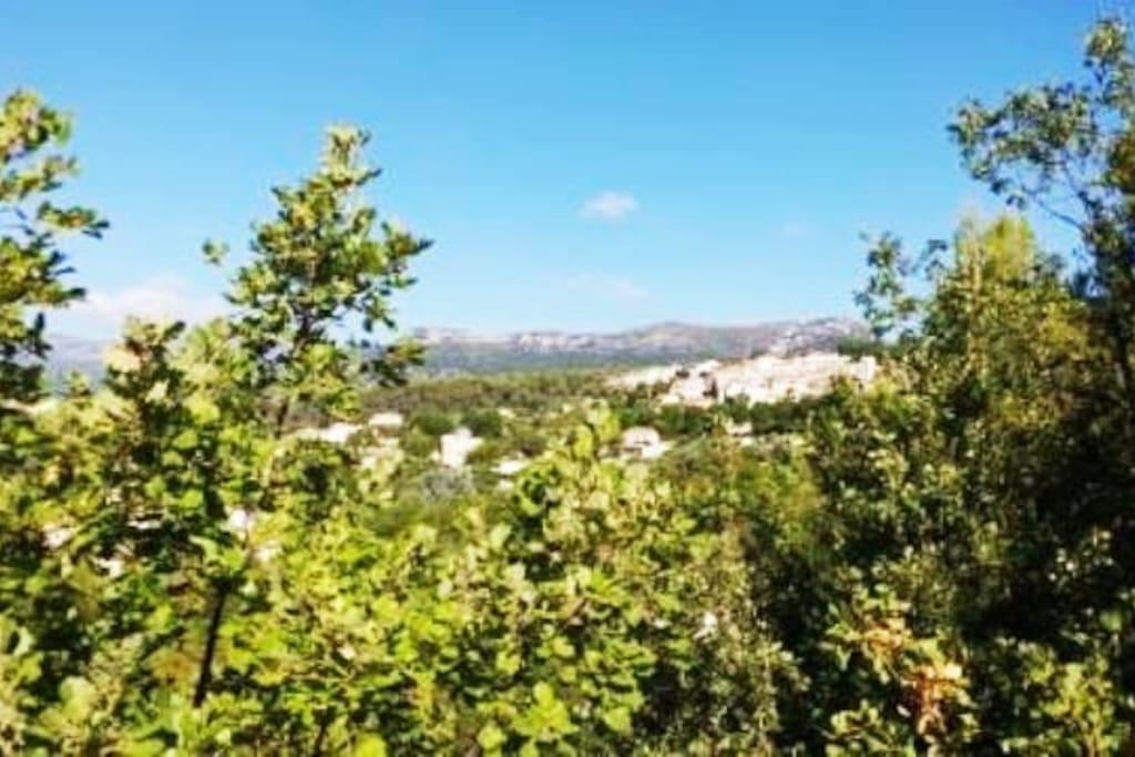 la vue sur le villa de La Gaude depuis la terrasse