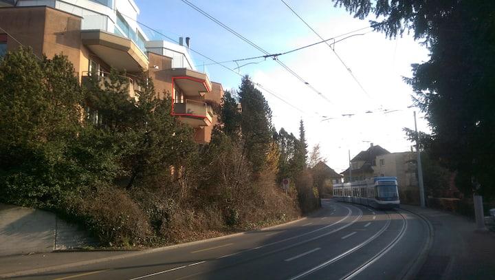 Elegant Zurich apartment with view