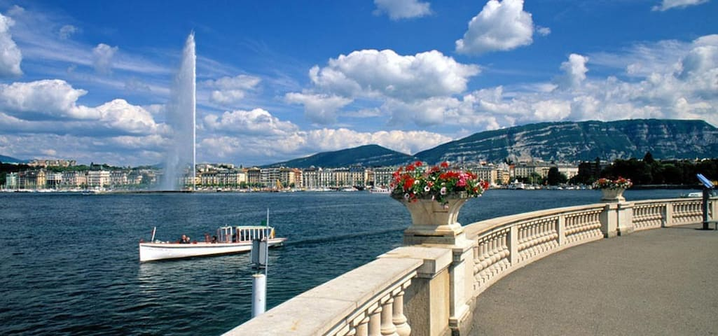 Living close to the lake, UN and city center - Genève - Pis