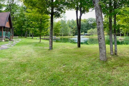 Private new cabin on 47 acres with fishing pond