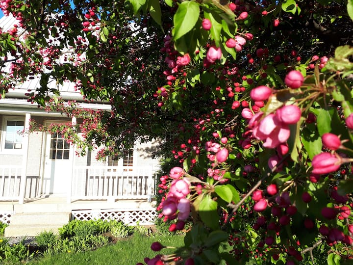 Jolie maison en banlieu.
