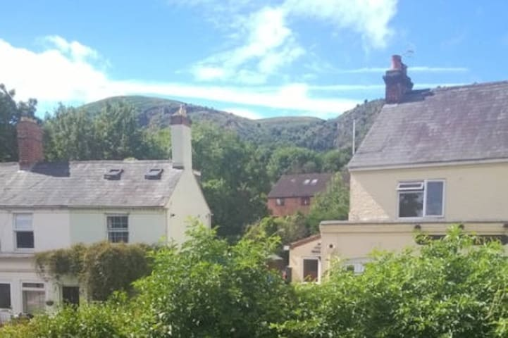 Lovely double room with hill views ... The Nook. - Worcestershire - Apartemen