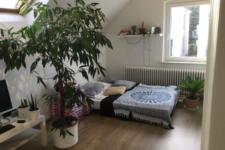 """Gemütliches Zimmer in """"Oldenburger Hundehütte"""""""
