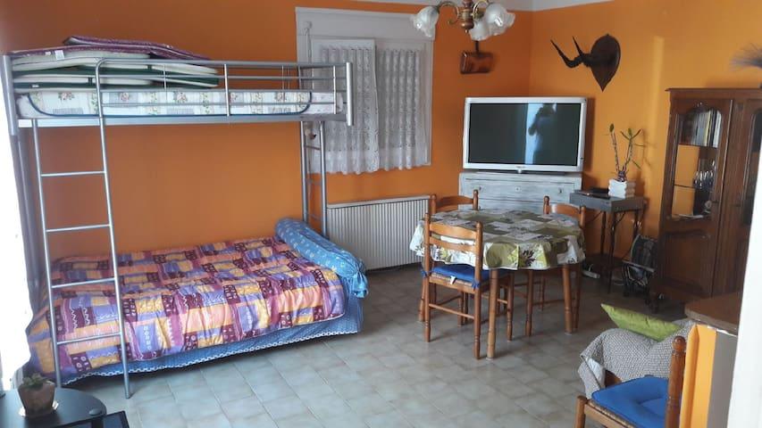 Le séjour/Salon avec couchage
