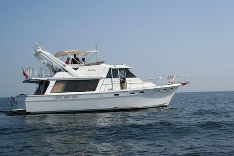 Sleep on a yacht ( Not for Cruising)