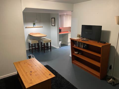Bright Basement in a Great Location
