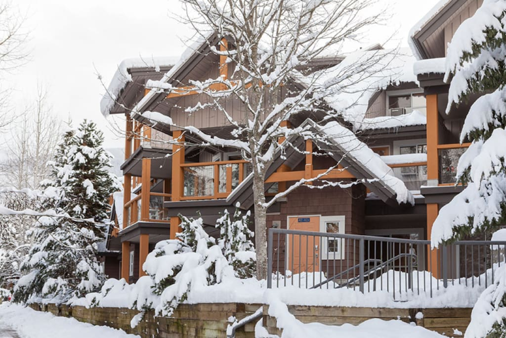 Your own private winter wonderland!