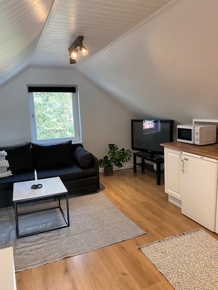 Naturnära studiolägenhet i Visbys utkant