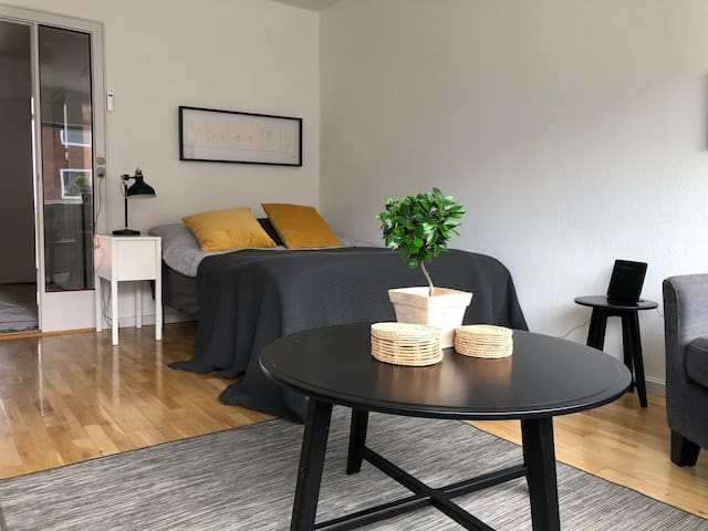 Cozy one room apartment, beds for 4,3,26