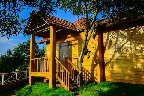 Luxury wood cottages redefine luxury at Sreemangal