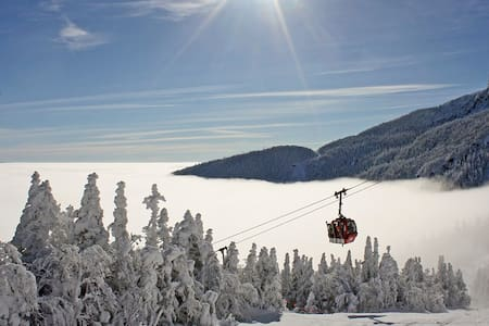 Stowe Mountain...Excellent Location ! - Stowe
