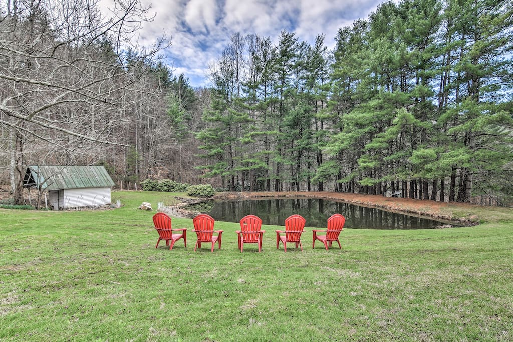 '100 Acre Woods' boasts 165 acres of vibrant evergreens and mountain vistas!