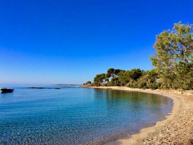 Wohnen direkt am Strand mit Meerblick