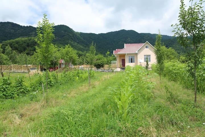 Дом на одну семью в г. Qəbələ, азербайджан