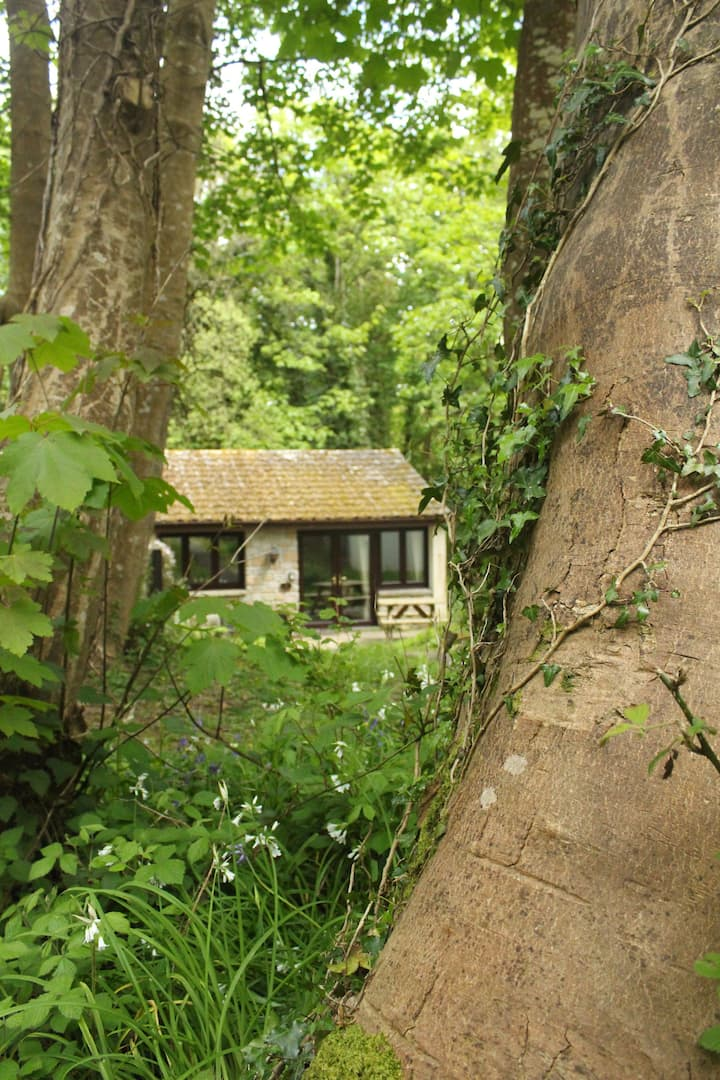 The Bumbledink Chalet can sleep 6 close to St Ives