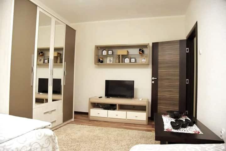 Apartman Sofronic 1