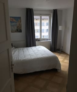 Zurich flat (city trip or business relax) - Zürich - Apartmen