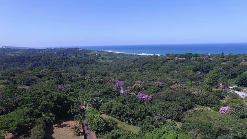 Pumula Retreat - Jungle Appartment